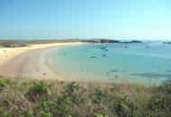 Ile d'Houat : plage et mer turquoise